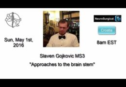 "HANGOUT  ""Approaches to the Brain Stem"" with Slaven Gojkovic MD"