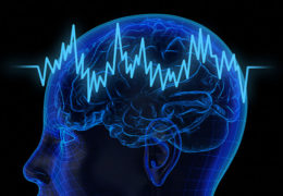 Biomedical engineers uncover new fundamental feature of brain oscillations