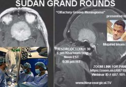 "Sudan Neurosurgery Grand Rounds, Recorded, Oct, 31, 2018; ""Olfactory Groove Meningioma"" with Mujahid Imam MD"