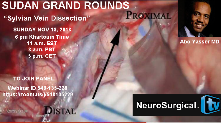 "Recorded TODAY, Sudan Grand Rounds, ""Sylvian Fissure Dissection"""