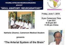 """Neuroanatomy"" Series of the LIVE NOW on this link, https://www.facebook.com/john.bennett.md"