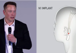 Elon Musk Announces Plan to 'Merge' Human Brains With AI