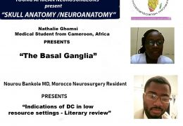 NOW, LIVE HERE ONLINE , Two Presentations, panelists welcome, by the Association of Future African Neurosurgeons