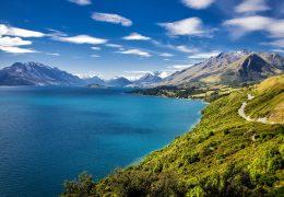 New Zealand Neurosurgery Shortage: Need Locums: Local Neurosurgeon says lives at risk