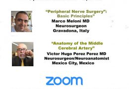 Africa Neurosurgery Grand Rounds May 2, 2020