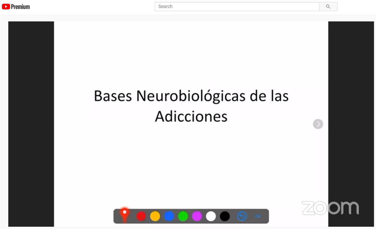 VIVO, AHORA, Dr Luis Delgado – Anatomia del sistema mesolimbico y mesocortical