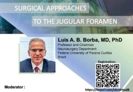 "Luis Borba NOW LIVE ""Surgical Approach to the Jugular Foramen"",  for the Indonesia Neurosurgery Society"