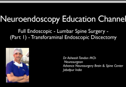 Start of Neuroendoscopy Channel on Sunday: Interactivity will be stressed!