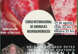 "NOW LIVE, Neuroanatomia con Luis Delgado de Mexico: ""Anatomy of Meninges and CSF"""