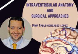 Saturday, Sudan Neurosurgical Meeting LIVE