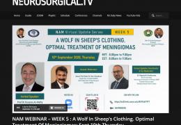 NAM WEBINAR – WEEK 5 : A Wolf In Sheep's Clothing. Optimal Treatment Of Meningiomas: Sept 10th Thursday