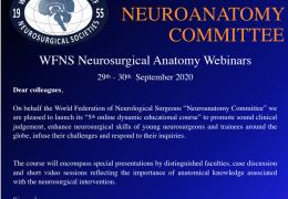 WFNS Neuroanatomy Series Tuesday Wednesday 12 pm GMT