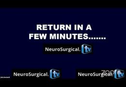 LIVE NOW, Neurosurgery Super Sunday, with three  presentations, including Borba and Cherian