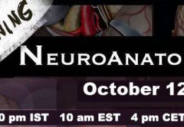NOW LIVE, Neuroanatomy #3 in Rhoton Series with Abhidha Shah MD
