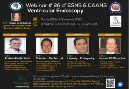 Webinar: Ventricular Endoscopy, by ESNS and CAANS, Nov 20, Friday Noon GMT