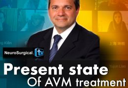 """LIVE, in a few minutes……. Juha's China Neurosurgery Grand Rounds, with Giuseppe Lanzino MD of Mayo Presenting """"Present State of AVM Treatment"""""""