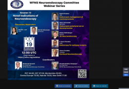 (Recorded LIVE LIVE LIVE……………………………WFNS Neuroendoscopy Committee Webinar Series, with Lam, Schroeder, Deopujari, and others