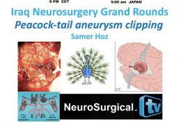 Sunday, Iraq Neurosurgery Grand Rounds, 11 pm Iraq time, 3 pm EST, 9 pm CET