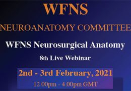 Was LIVE,  8th WFNS Neuroanatomy Symposium Tues/Wed LIVE on Neurosurgical.tv recorded Tuesday, Feb 2, 2021