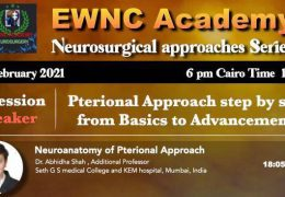 See Recorded Presentations, Edited from few days ago, with the EWNC Collaboration with Neurosurgical TV
