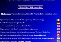 """NOW, LIVE……Day #2 of the """"WFNS Neurosurgical Anatomy"""""""