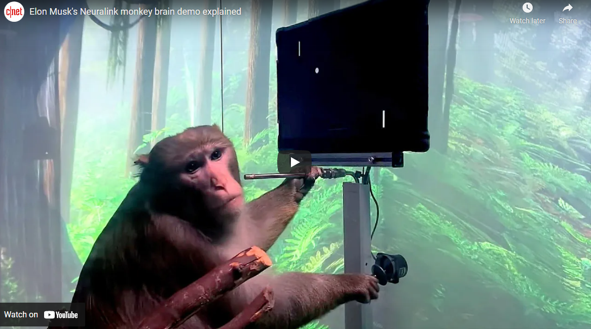 Elon Musk's Neurolink has Monkey Playing Video Game!