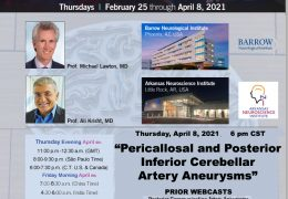 """NOW LIVE, Thursday, Last of 6 in Series of """"Achieving Mastery in Aneurysm Microneurosurgery"""" with Mike Lawton MD and Ali Krisht MD"""
