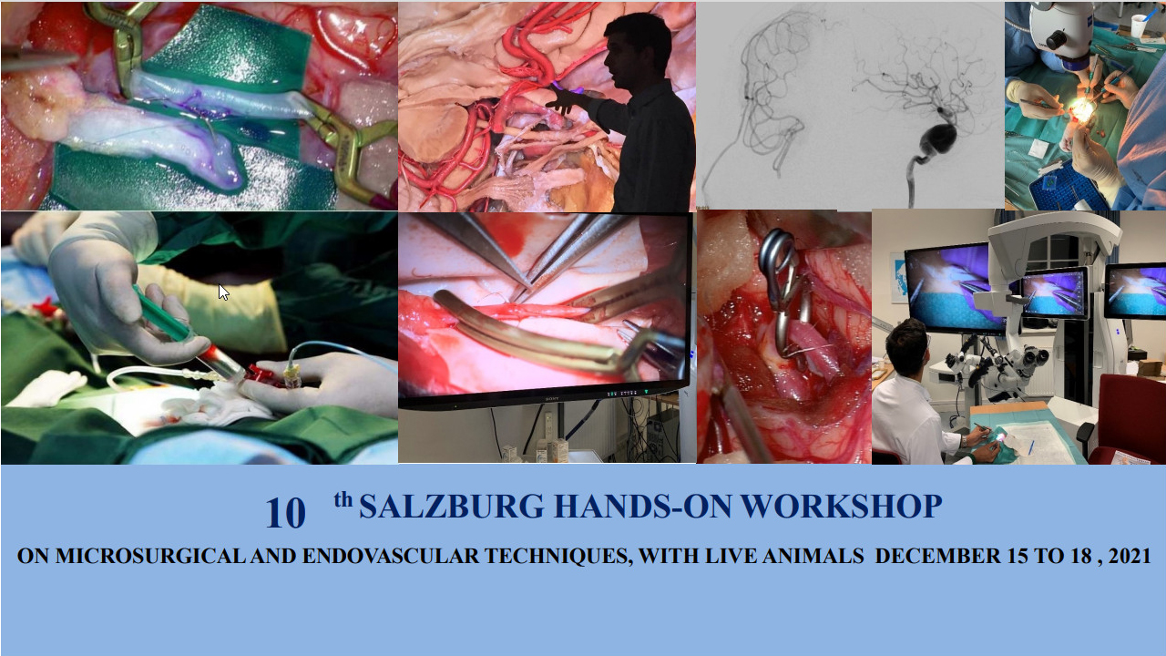 DEC 15 to 18th, 10th Salzburg Hands on Workshop, from the Christian Doppler Medical Center Research Lab for Microsurgical NeuroAnatomy